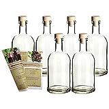 gouveo 6er Set Leere Glasflaschen Klassik 500 ml Klar incl. Holzgriffkorken und Rezeptbroschüre, Flaschen für Liköre, Essige und Öl
